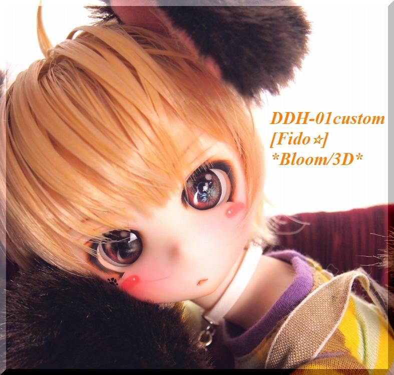 *B-3D*DDH-01:カスタムヘッド[Fido☆]+Eye3p+オリジナルコラボWig+ワンコセット:MDD、40素体、少年等に♪