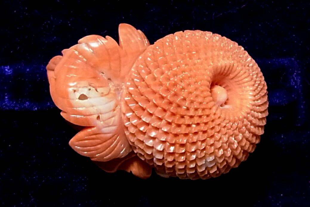 高知サンゴ工房 玉菊細工 珊瑚帯留め 三分紐用 紐通し式帯留 珊瑚細工フラワー花モチーフ宝石さんご女性和服 着物 和装小物オレンジピンク