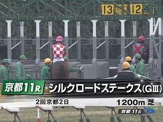 JRA重賞#競馬#予想# シルクロードS
