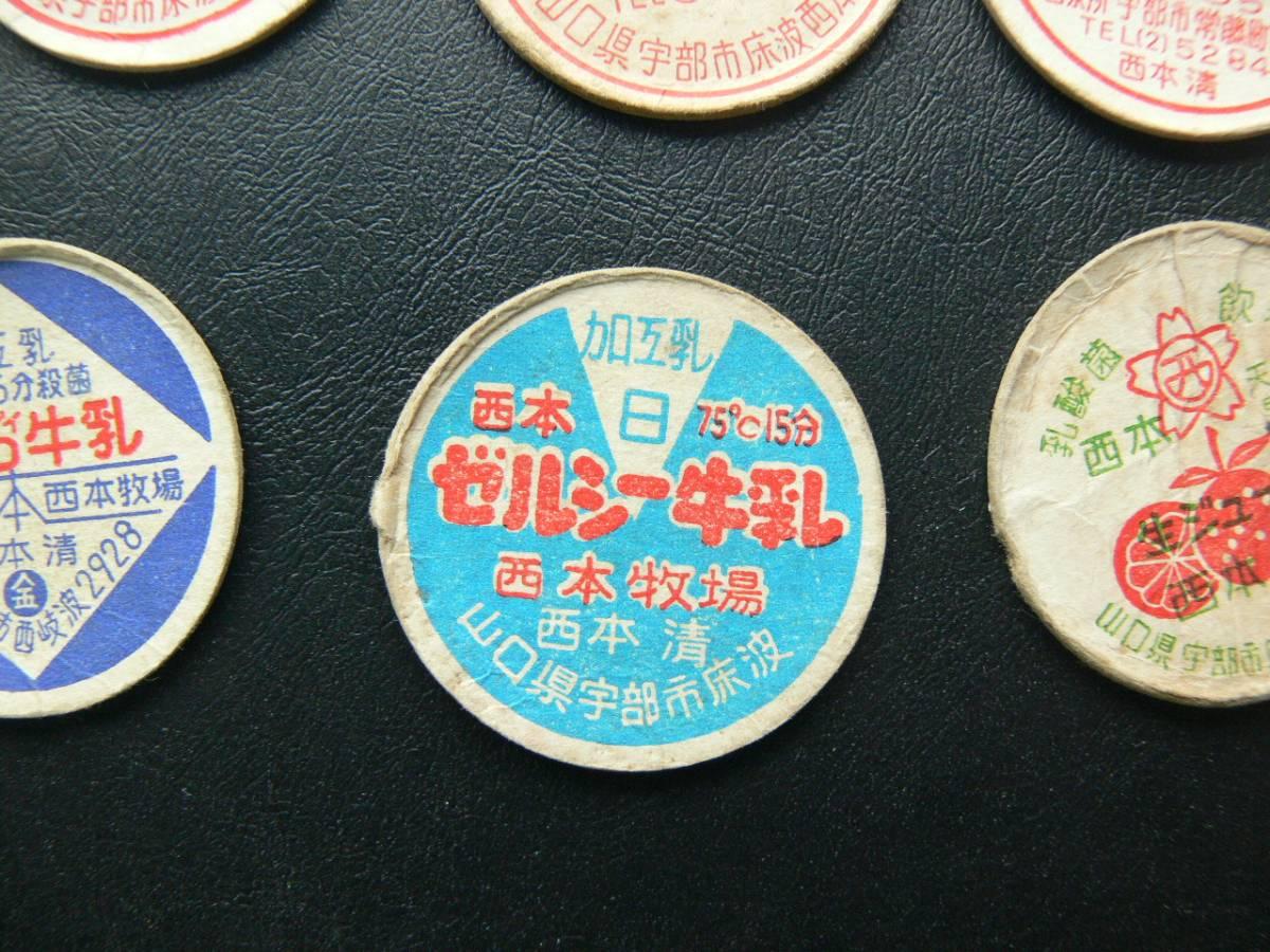 ●●昭和レトロ 地方牛乳 フタ キャップ 山口県宇部市 西本_画像5