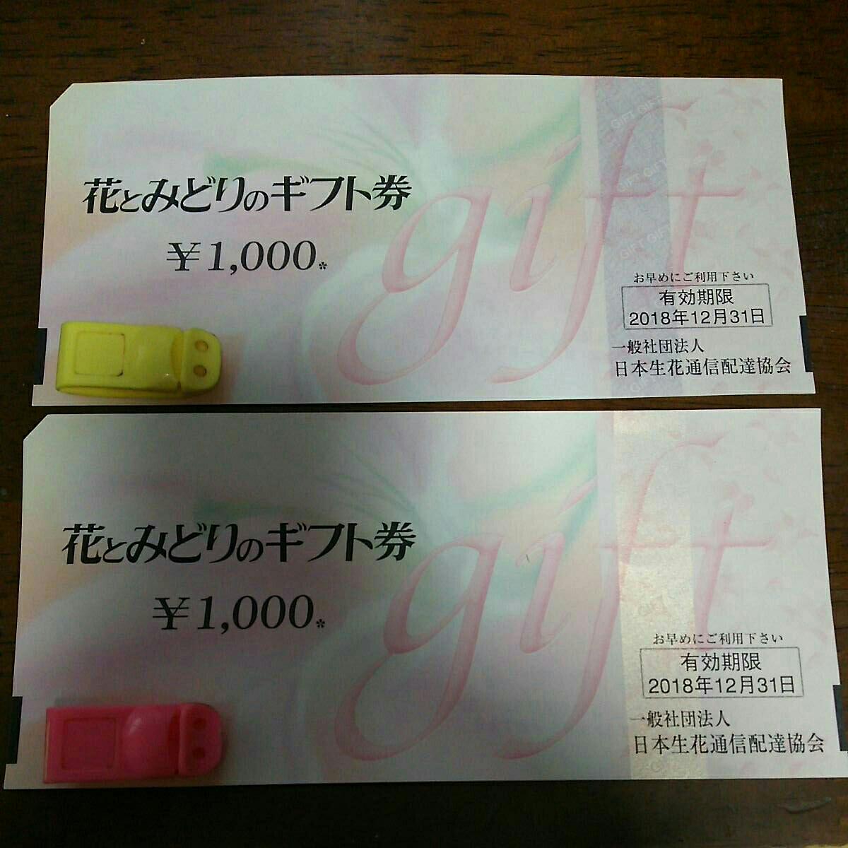 花とみどりのギフト券 1000円券2枚(計2000円分) 2018/12/31期限