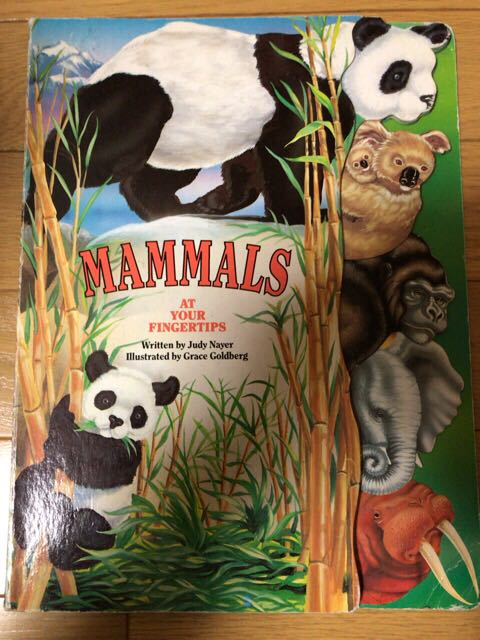mammals at your fingertips at your fingertips series 動物絵本 英語