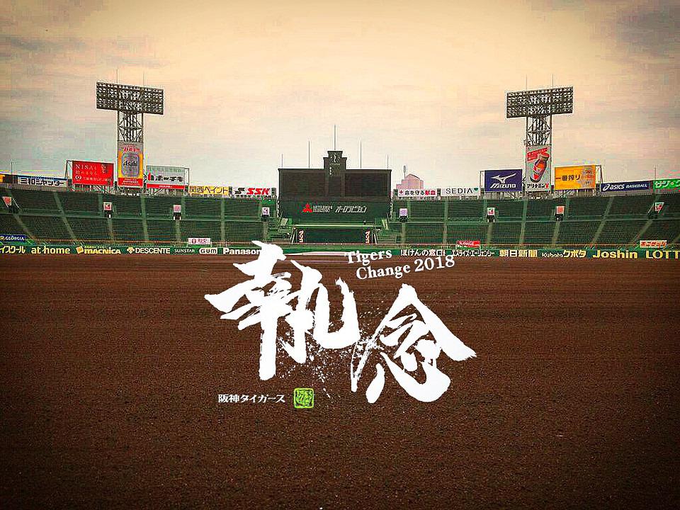 〓甲子園開幕記念帽子」4/10(金) 阪神vs広島 1塁アルプスペア価格6連可〓
