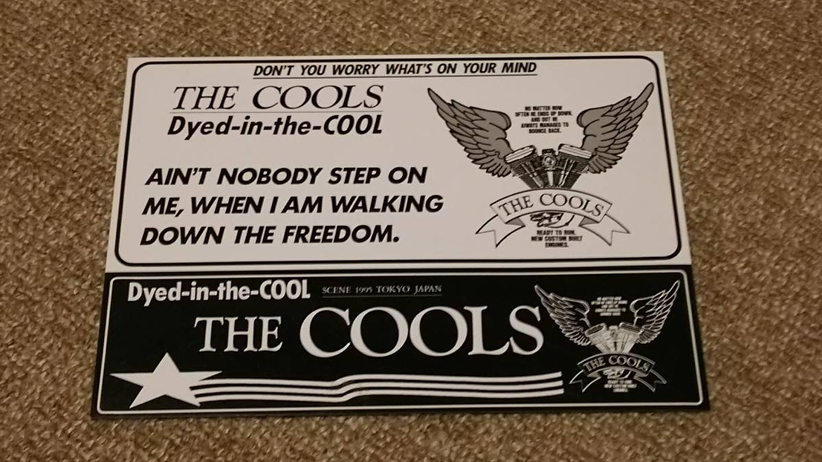 【THE COOLS】dyed-in-the-cool ステッカー3枚セット