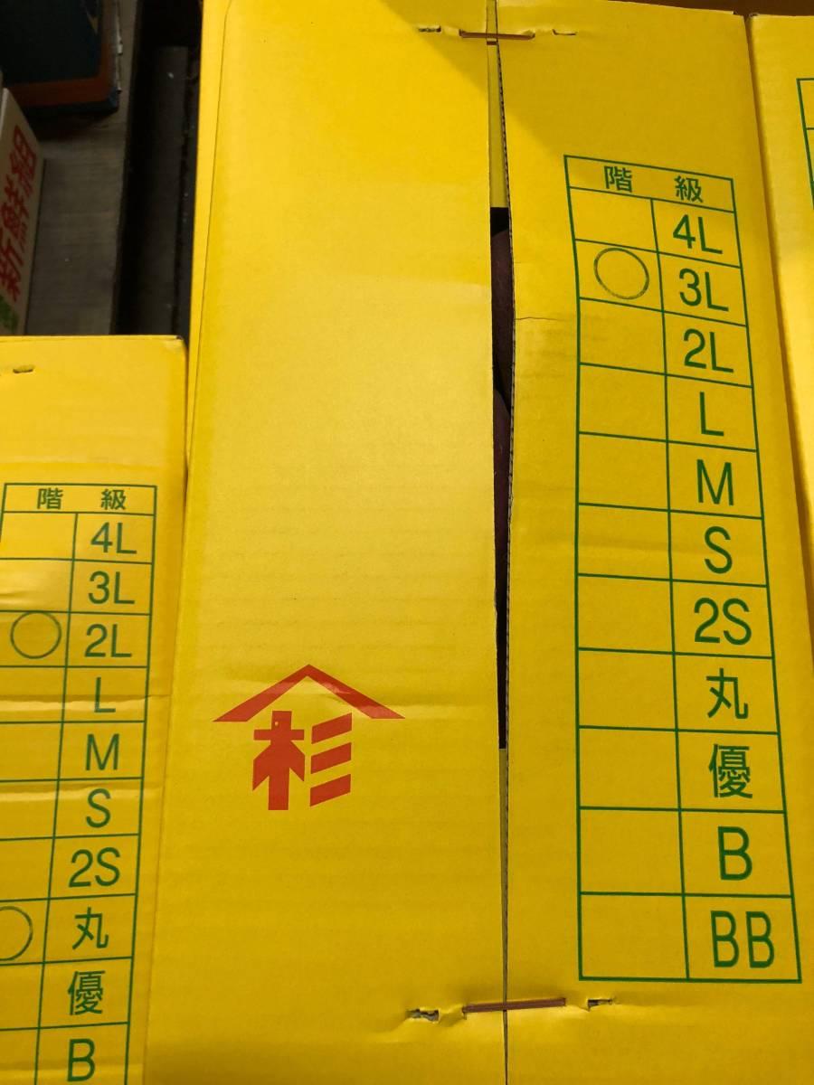 ☆激ウマ☆山杉さん家のなると金時☆さつまいも鳴門金時5kg3Lサイズ_画像3
