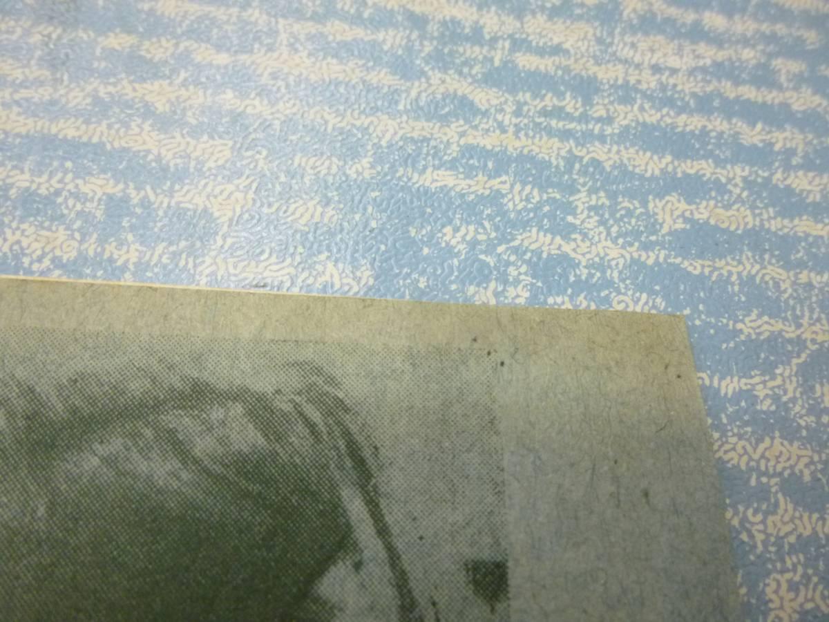 映画チラシ★格子なき牢獄 日比谷映画劇場★コリンヌ・リュシェール_画像4