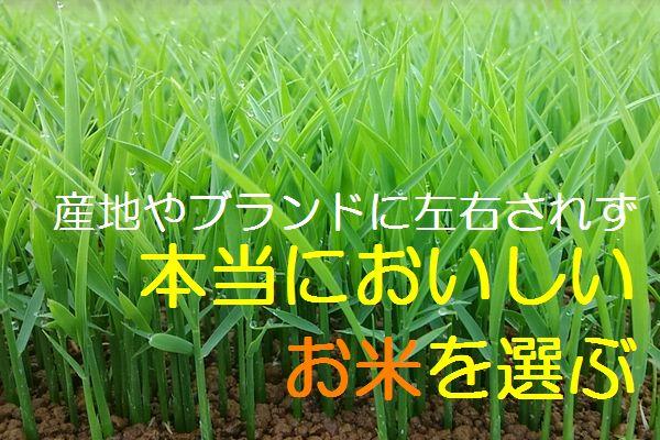 うまい米はブランドじゃなく生産者で選ぶ 29年 無農薬 無化学肥料で玄米食に最適! ヒノヒカリ てんこもり イセヒカリ から選べる☆_画像3