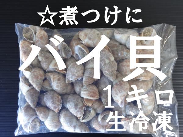 ☆大人気** 煮つけに バイ貝 1キロ  生冷凍_画像1
