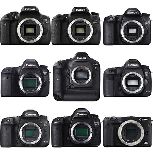 【1日レンタル(前日配送)】Canon EF100-400mm F4.5-5.6L IS USM / キャノン 望遠 ズーム レンズ 配送料無料_カメラボディもオプション利用可能