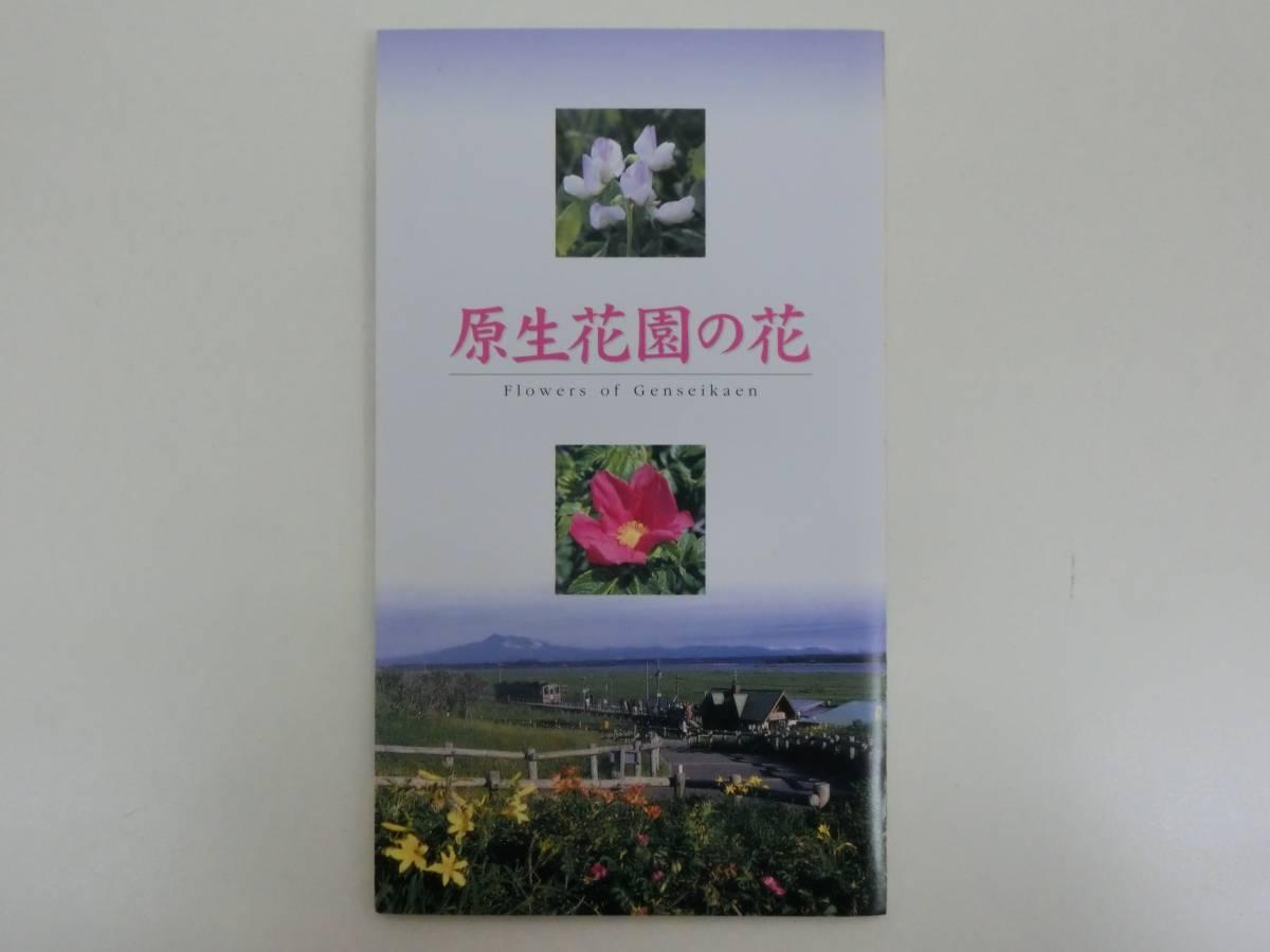 JR北海道 原生花園の花 切符 硬券 入場券