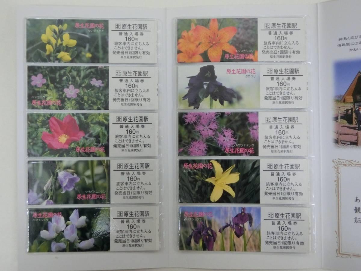 JR北海道 原生花園の花 切符 硬券 入場券_画像3