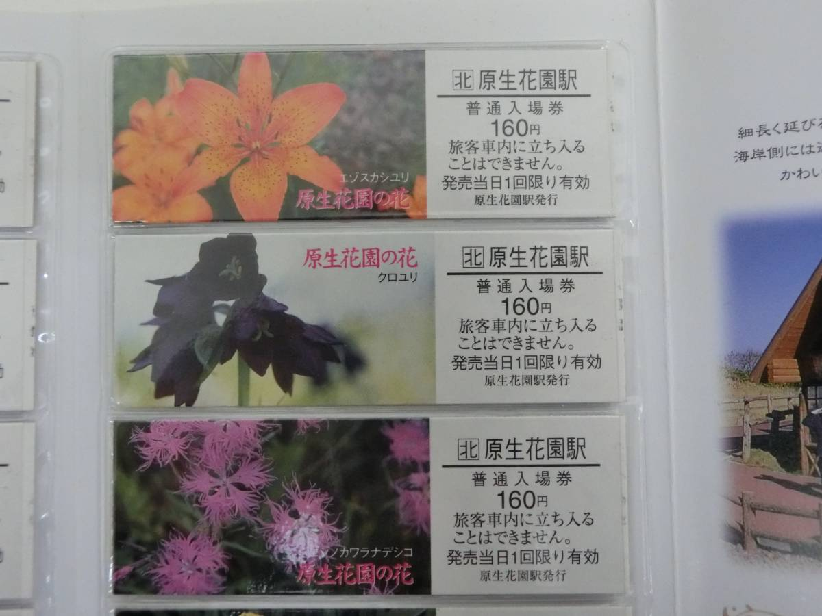 JR北海道 原生花園の花 切符 硬券 入場券_画像4