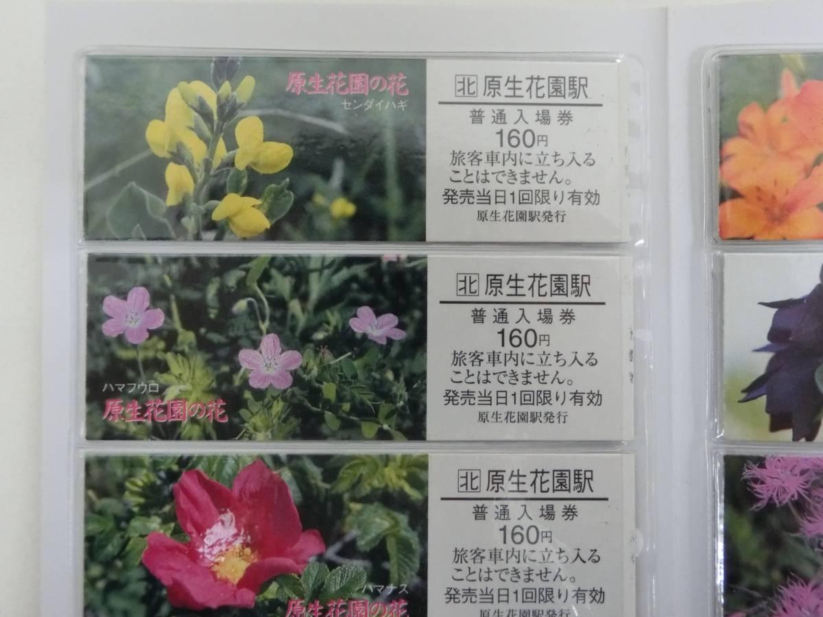 JR北海道 原生花園の花 切符 硬券 入場券_画像6
