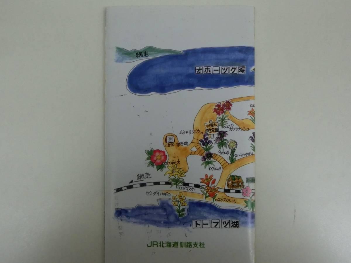 JR北海道 原生花園の花 切符 硬券 入場券_画像8