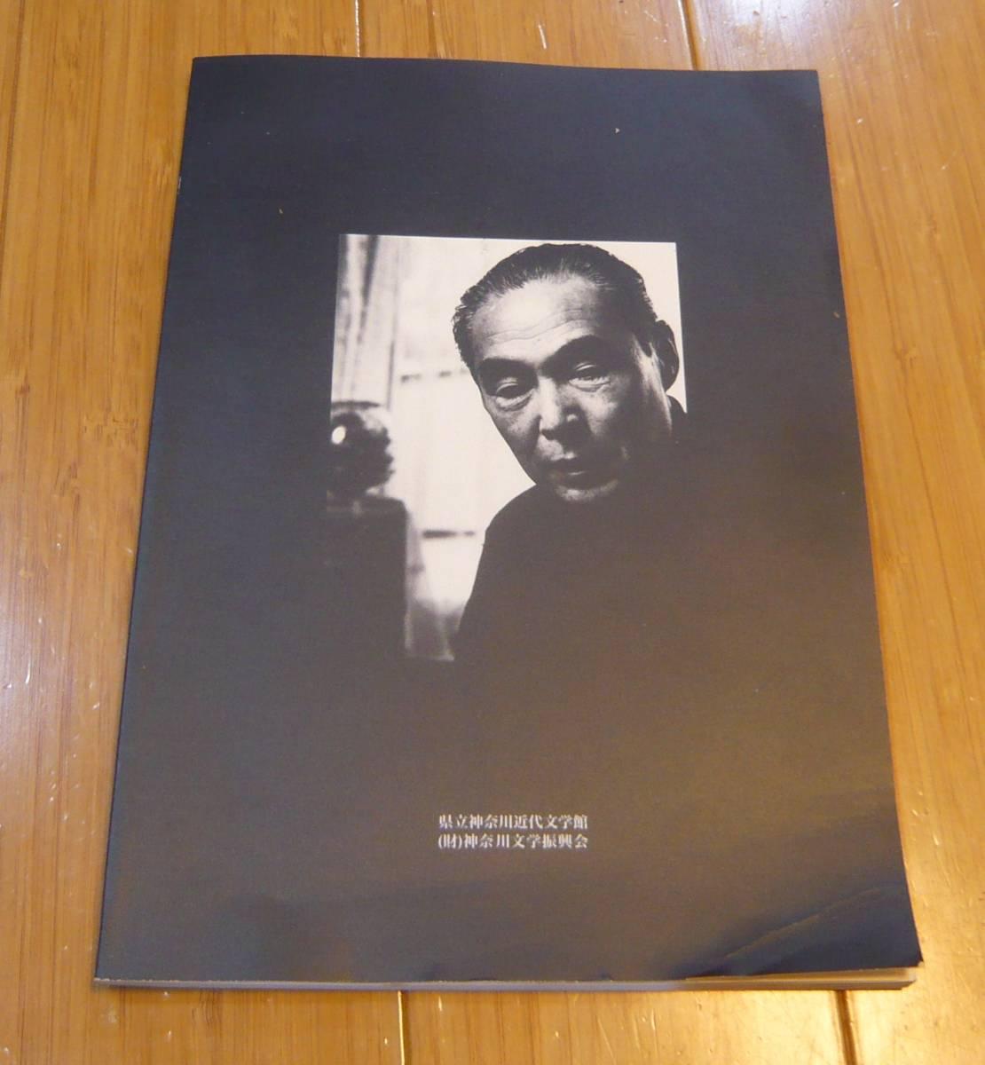 図録 無限大の宇宙ー埴谷雄高『死霊』展 神奈川近代文学館2007_画像3