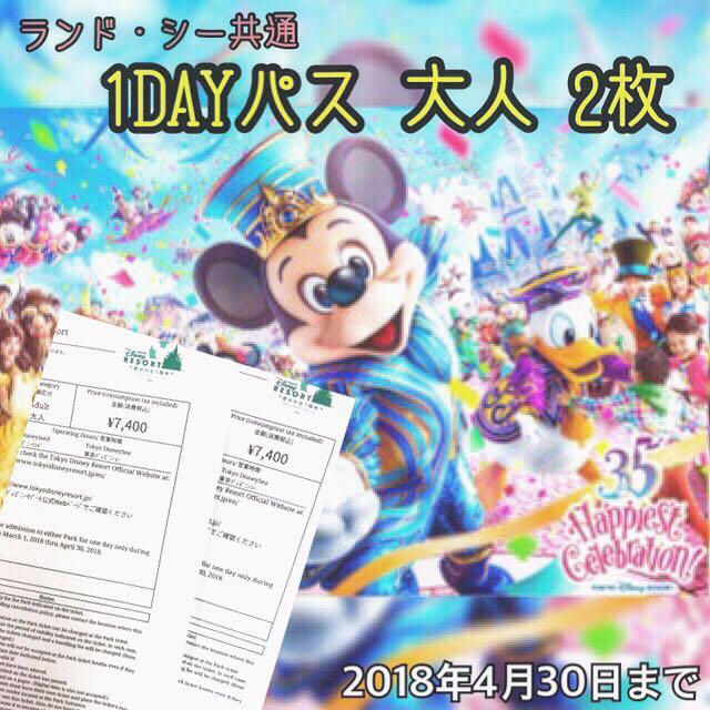 東京ディズニーリゾート 1dayパスポート 大人チケットペア