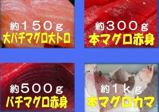 w【送料無料】豪華 鮪4点ダブルセット 大トロ/カマ/赤身など_画像1