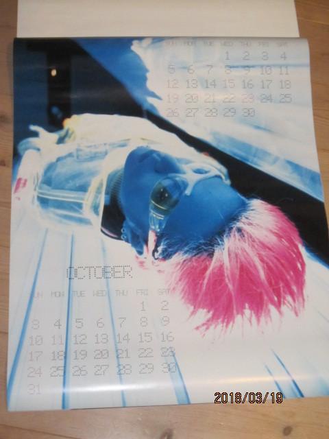 絶版◆HIDE◆ヒデ1999年カレンダーポスター新品その⑧X JAPAN◆ジャパメタヘビメタYOSHIKIPATA TAIJI TОSHIエックスインディーズバンド_画像6