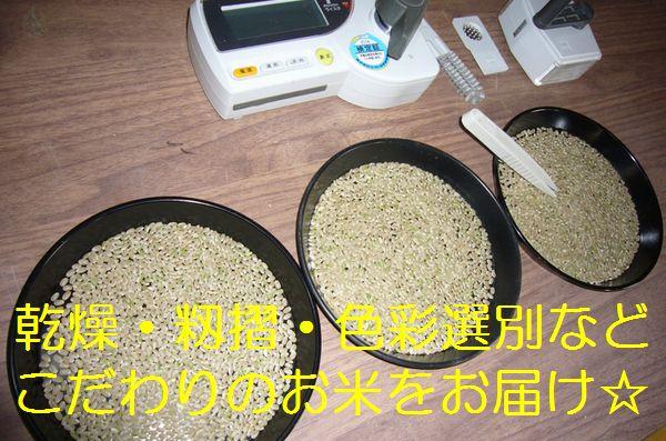 うまい米はブランドじゃなく生産者で選ぶ 29年 無農薬 無化学肥料で玄米食に最適! てんこもり イセヒカリ から選べる☆_画像2