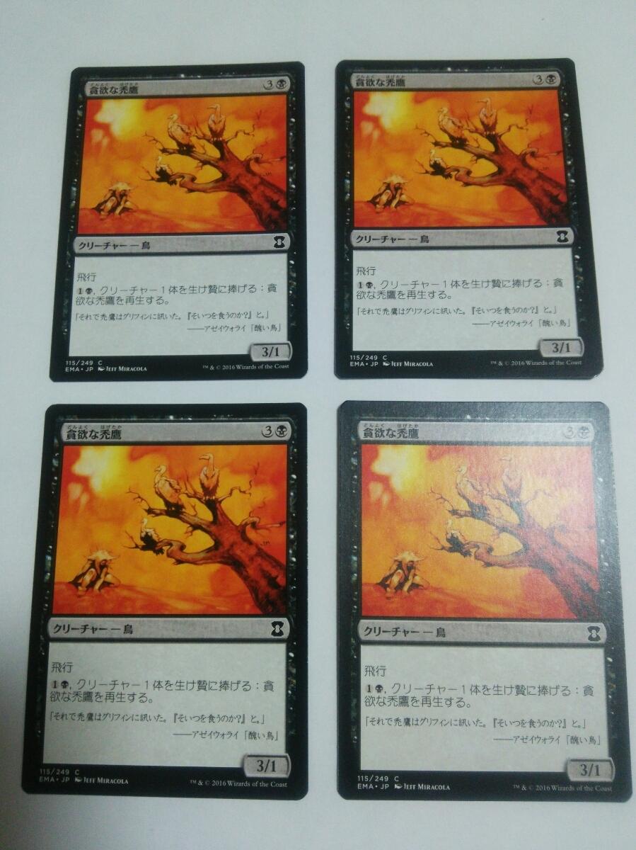 MTG マジックザギャザリング 貪欲な禿鷹 日本語版 4枚セット_画像1