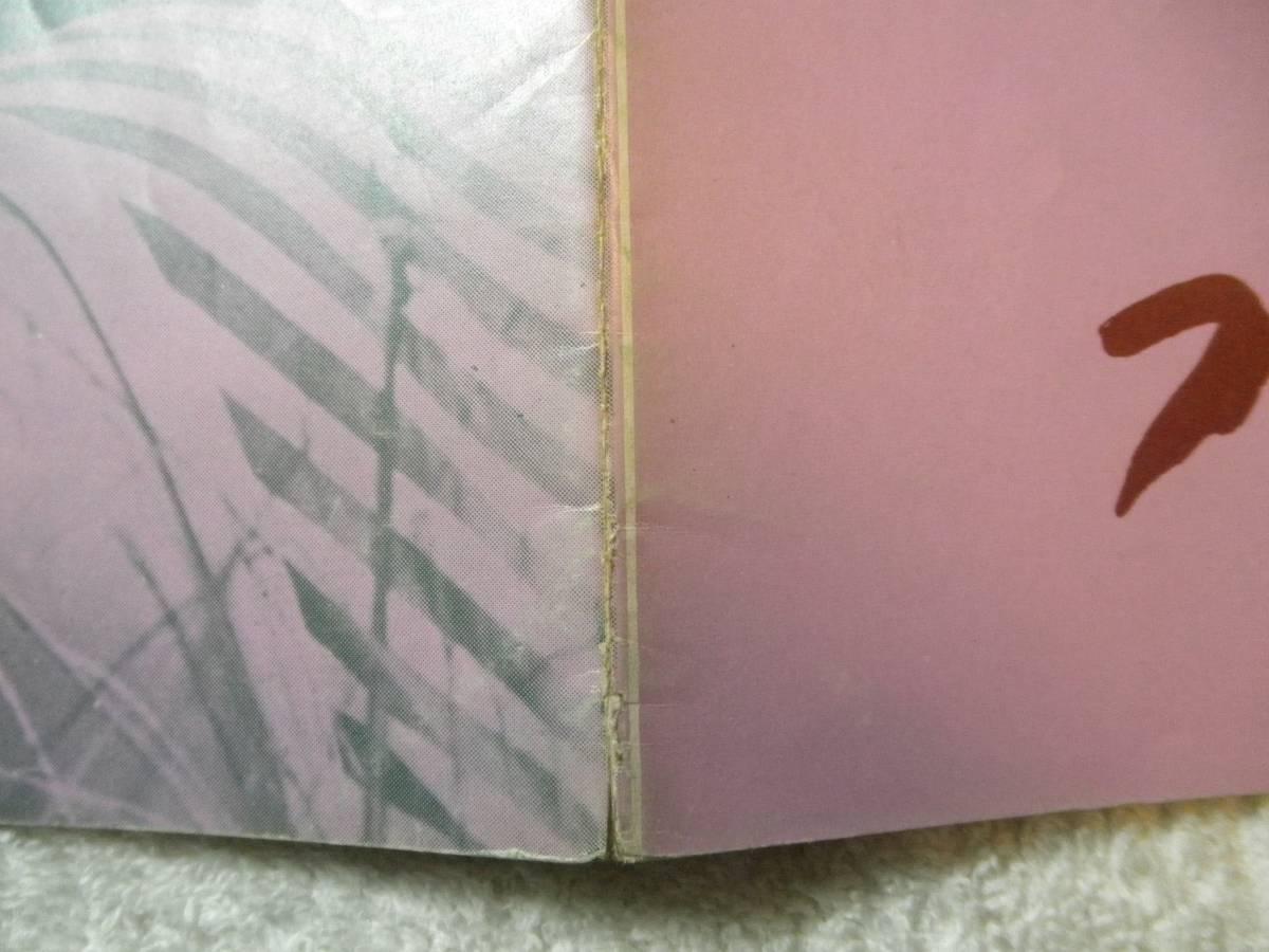 女豹ビクセン A4 1969 初版 ラス・メイヤー監督_画像8