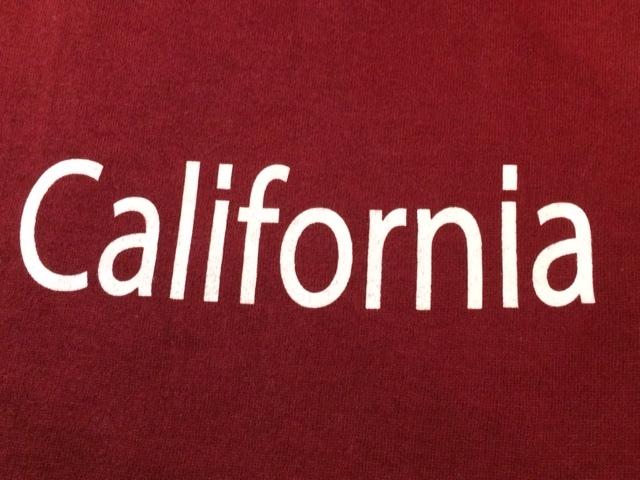 ★表記S/新品!CALIFORNIA.カリフォルニアプリント.ZIP FIVE.スウェット.WINE.サーフサーファー.西海岸アメカジスタイル.配色◎.サファリ/Y_画像6