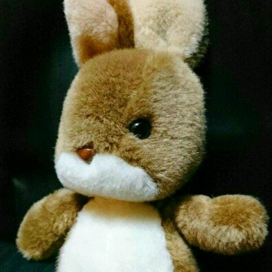 新品 うさぎ ぬいぐるみ ウサギ 兎 green cards 昭和レトロ 昭和 レトロ 人形 きせかえ / サンアロー ラッキー サンディ イヌ 犬 いぬ 友達_画像5