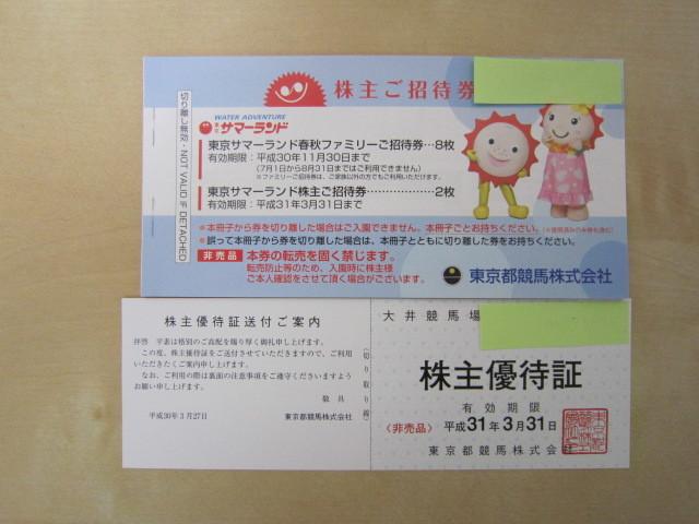 東京サマーランド 株主優待券 10枚綴り 大井競馬場優待証 1枚