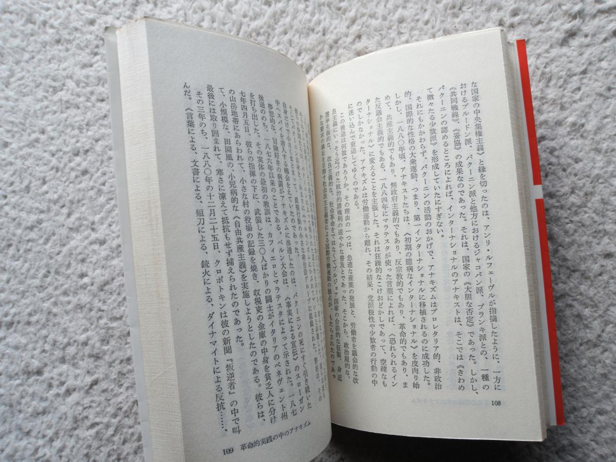 現代のアナキズム 甦る絶対自由の思想 (三一新書) ダニエル・ゲラン、江口 幹訳_画像10
