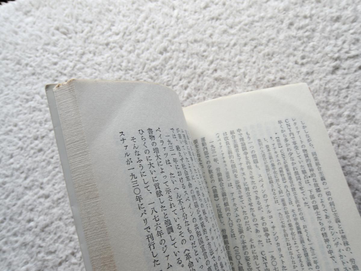 現代のアナキズム 甦る絶対自由の思想 (三一新書) ダニエル・ゲラン、江口 幹訳_画像8