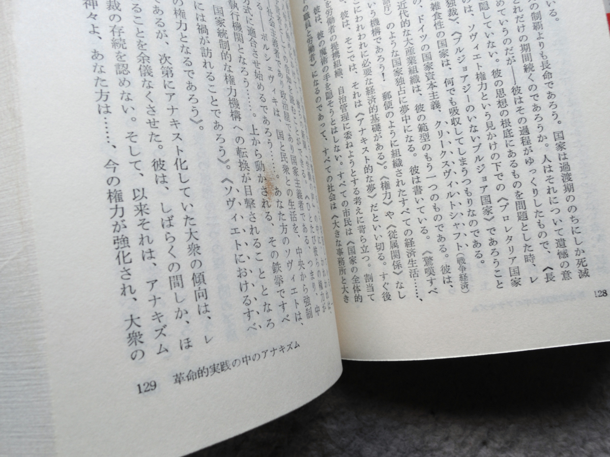 現代のアナキズム 甦る絶対自由の思想 (三一新書) ダニエル・ゲラン、江口 幹訳_画像9