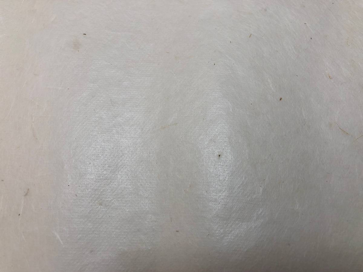 【翼用紙】ゴム動力機用手漉き紙20枚(雁皮のようなつやと強度を持つ、美しい薄紙)