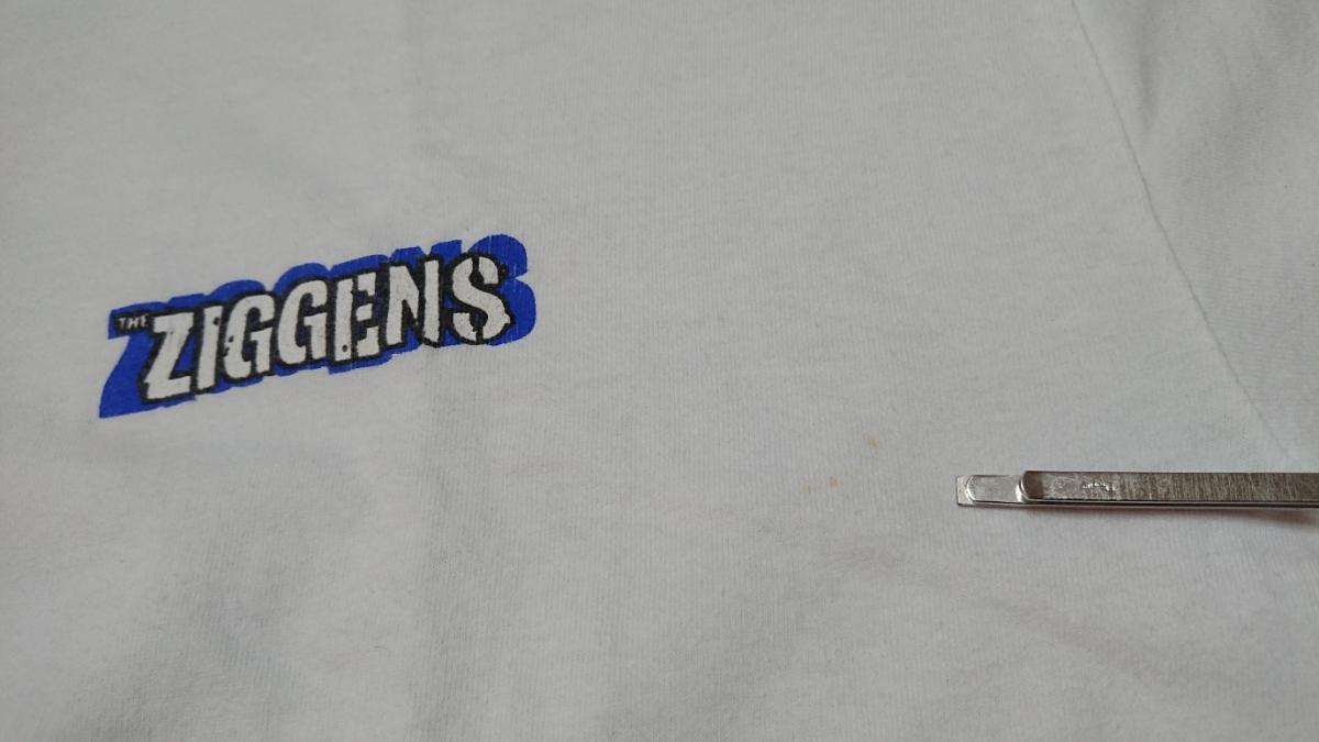 the ziggens Tシャツ XL USED ジギンズ / SUBLIME SKUNK slightly stoopid LONG BEACH DUB ALLSTARS jack johnson red hot chili peppers_画像5