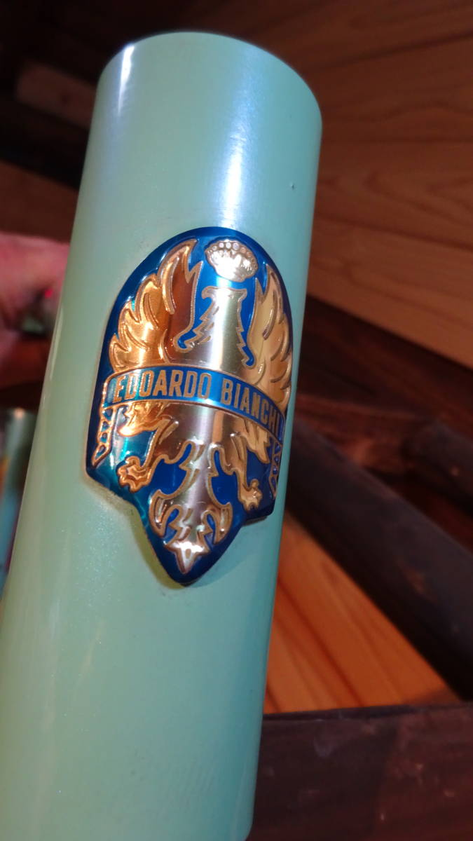 MADE IN ITALY BIANCHI MEGA PRO JUNK+ VIDEO_画像5
