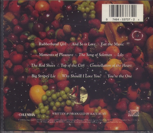 CD ケイト・ブッシュ KATE BUSH THE RED SHOES_画像2