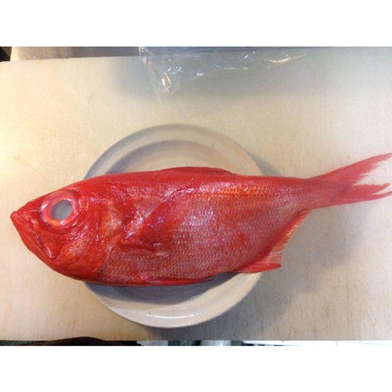 金目鯛 1尾(約2kg) キンメダイ きんめだい_画像1