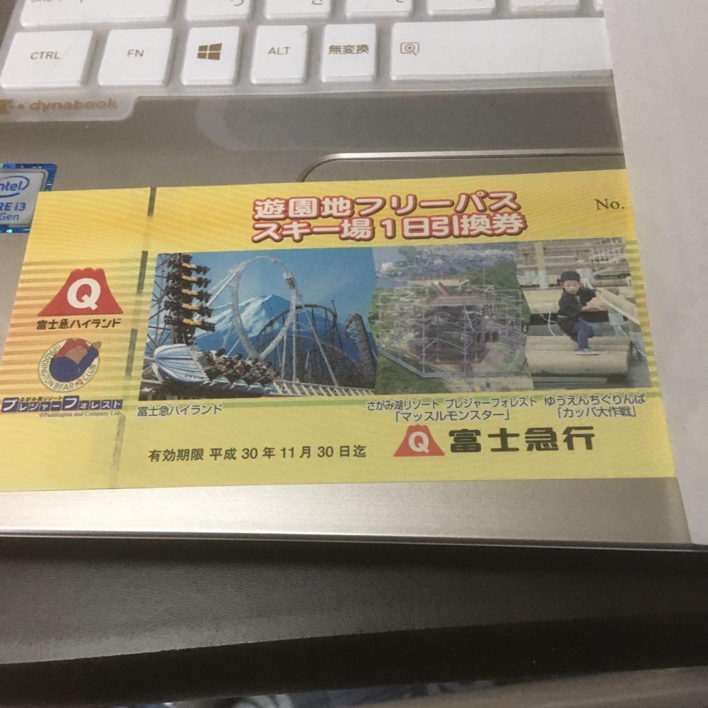 ☆送料無料 富士急ハイランド 株主優待 1枚 フリーパス パスポート チケット☆