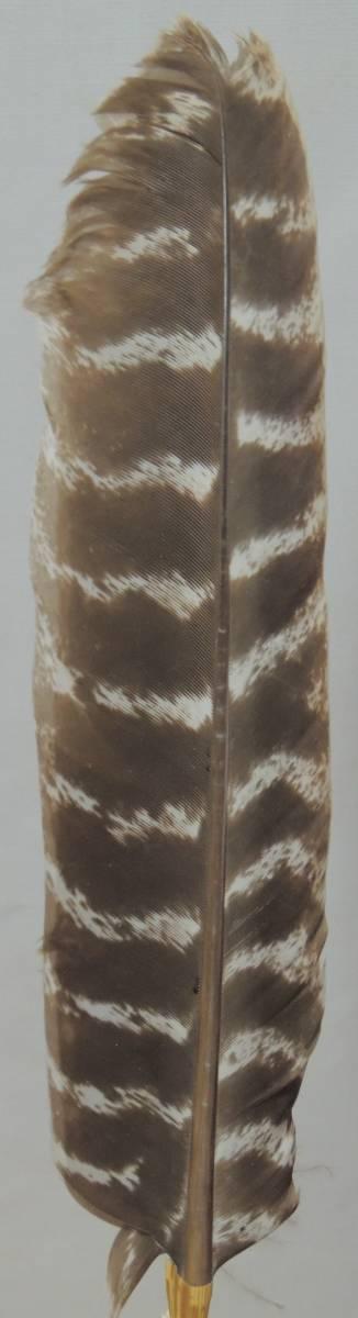 御羽箒 風炉用 紙箱 検索:鶴 犬鷲 煎茶道具 紫砂 鐵壷 湯沸 茶中国古玩_画像2