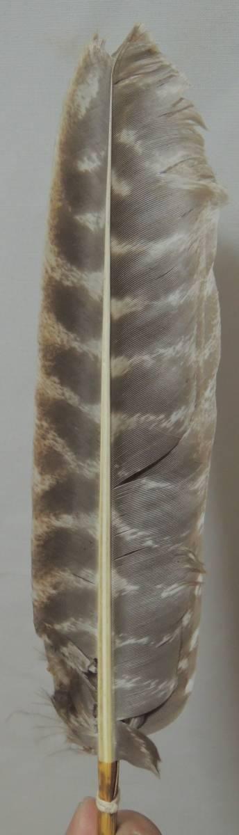 御羽箒 風炉用 紙箱 検索:鶴 犬鷲 煎茶道具 紫砂 鐵壷 湯沸 茶中国古玩_画像3