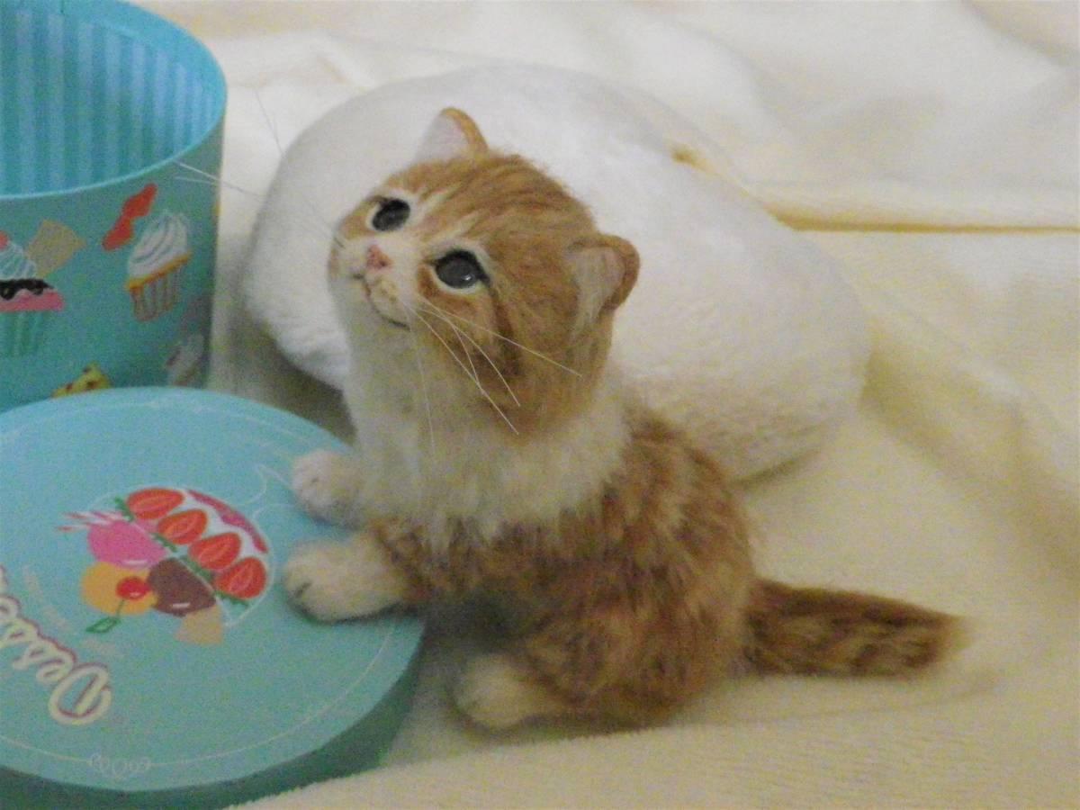 funwari■□■ 羊毛フェルト 茶トラ白 仔猫 見上げポーズ あき箱と仔猫 ハンドメイド_画像5