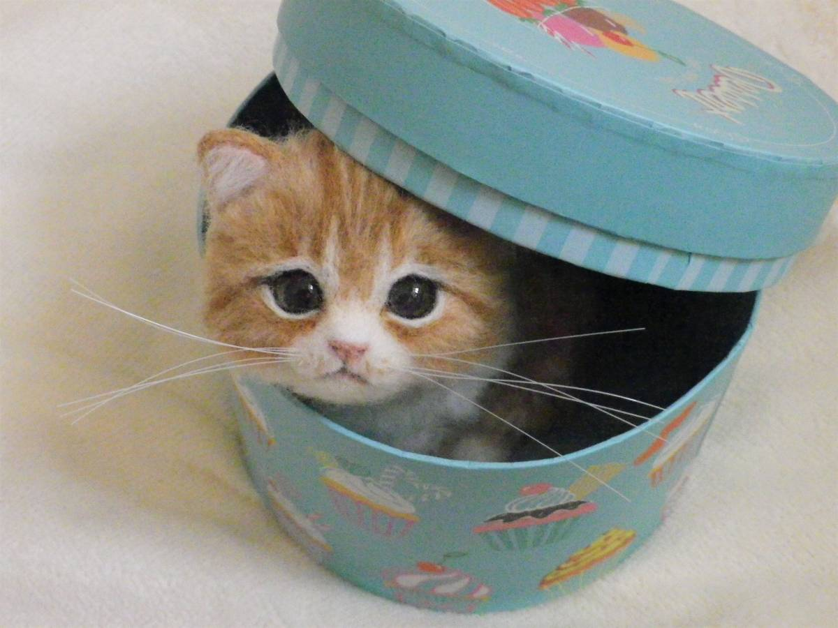 funwari■□■ 羊毛フェルト 茶トラ白 仔猫 見上げポーズ あき箱と仔猫 ハンドメイド