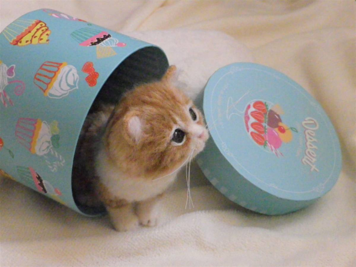 funwari■□■ 羊毛フェルト 茶トラ白 仔猫 見上げポーズ あき箱と仔猫 ハンドメイド_画像7