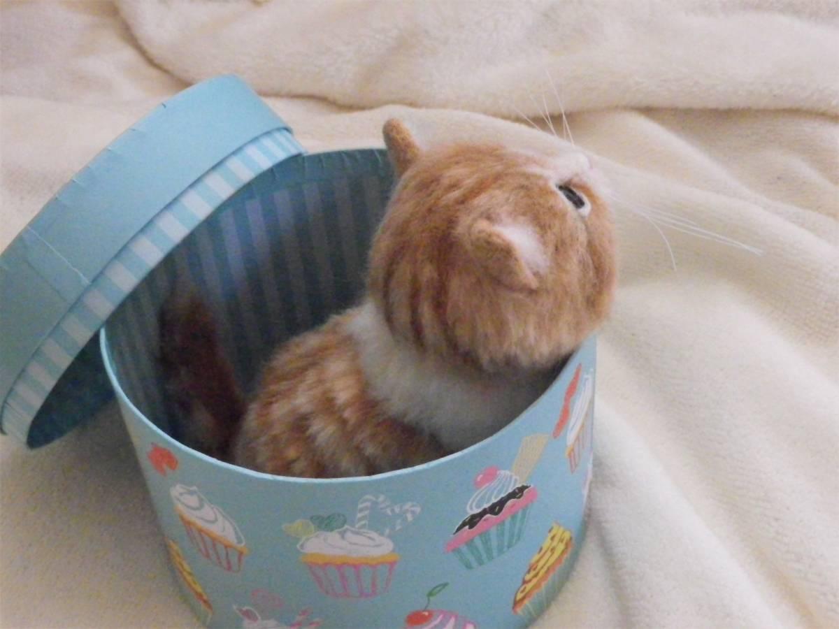 funwari■□■ 羊毛フェルト 茶トラ白 仔猫 見上げポーズ あき箱と仔猫 ハンドメイド_画像4