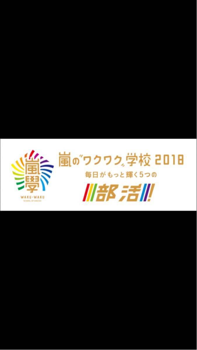 京セラ・6月10日(日)11時開演-2枚セット  嵐ワクワク学校