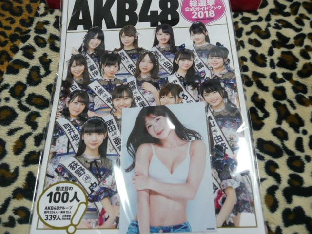 AKB48 世界選抜総選挙 公式ガイドブック 外付け 谷川愛梨