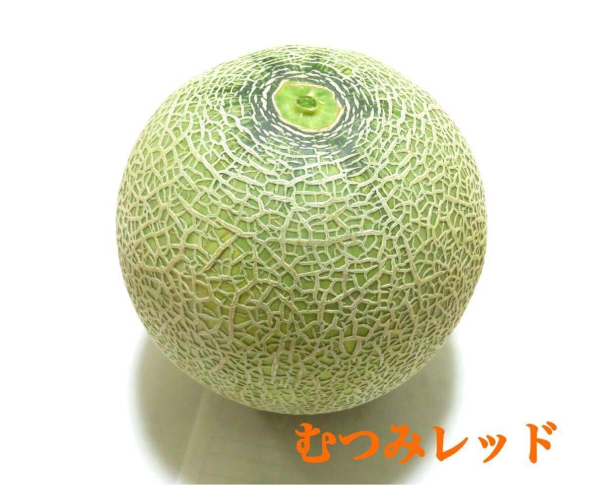 1円~ ☆家庭用 茨城県産 むつみレッド 1箱 約5kg 3玉~4玉 糖度12度~17度 同梱不可 a5