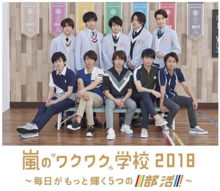 【本日早期終了】6/30 嵐のワクワク学校 2018 東京ドーム 外野ライト 2~8列(A)