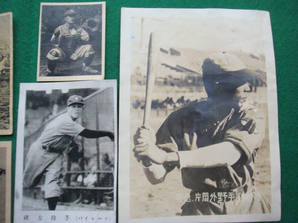 古い野球選手の写真・プロマイド 37枚 検索プロ野球 東急松竹ロビンズ 毎日西鉄西日本 国鉄中日金星大映巨人時代_画像4