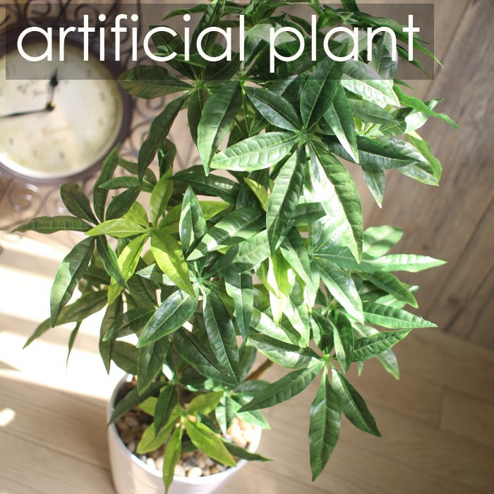 ■ artificial foliage plant artificial flower 60cm pakira tree interior interior green fashionable photocatalyst over the effect pakira handsome interior