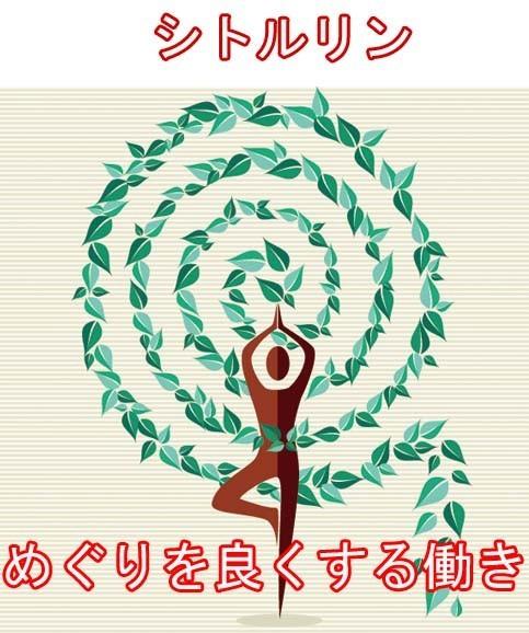 1円~  メンズ 活力 サプリ シトルリン + 有機マカ(ペルー産) M w_画像5